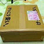 イオシスで購入したX201の箱。